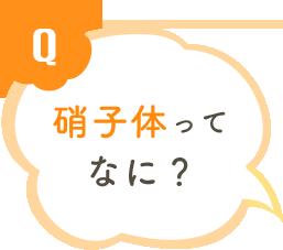 Q 硝子体ってなに?